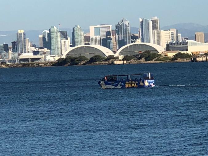 San Diego city view