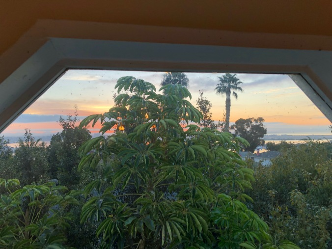 View from San Diego attic