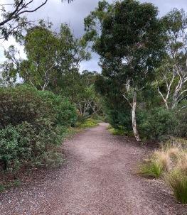 Newport Lakes walking path