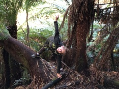 Triangle pose on tree