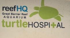 turtle hospital sign