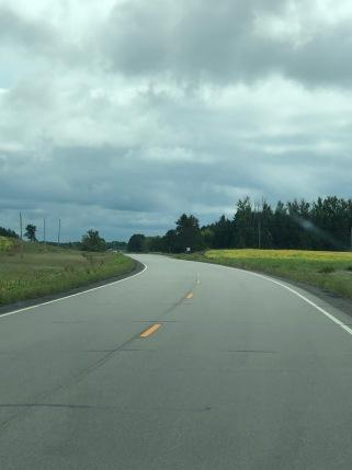 Gray Eagle road